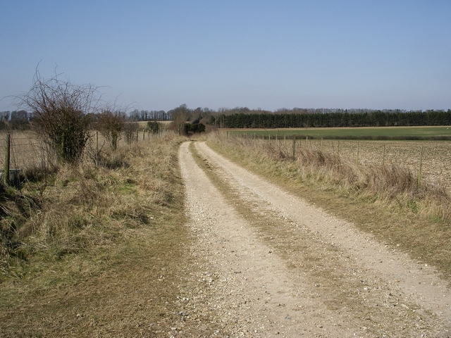 Track leading to Sutton Down Farm
