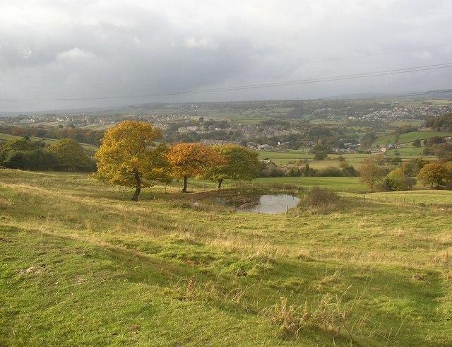 Pond, near Haigh Hill, Longwood