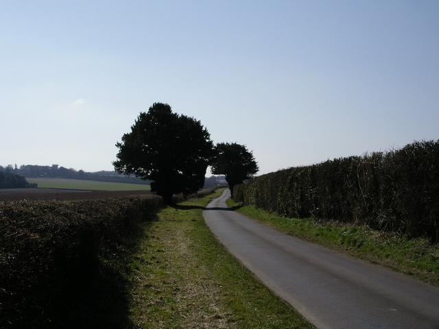 Wonston Lane