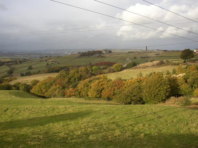 The valley of  Harrow Clough,  near Haigh House, Longwood