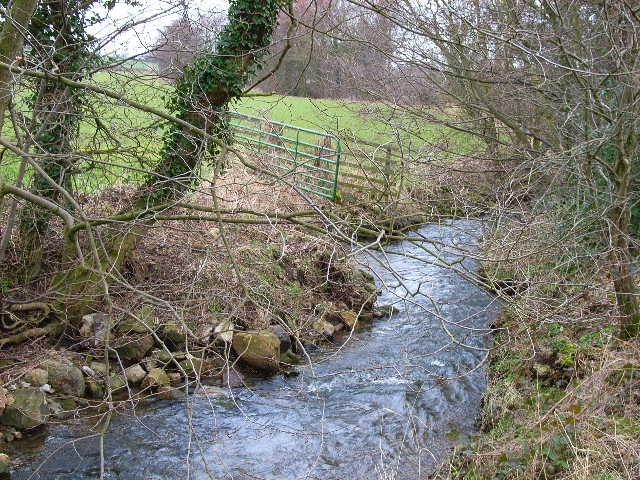 Garriston Beck, near Hunton