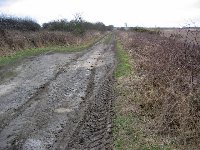 Green lane, Kilham West Field