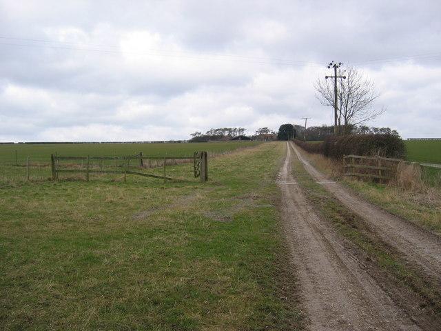 Branton's Farm