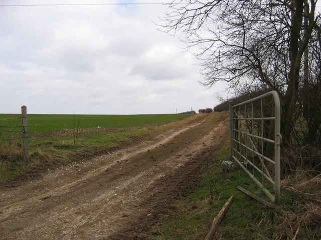Field Track at TA072677