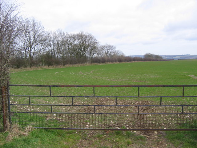 Farmland on the B1253