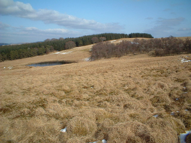 Small reservoir below Parkhead Hill