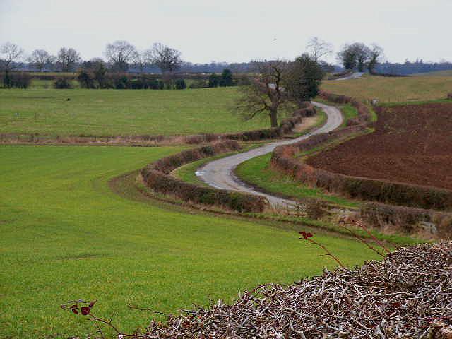 Near Bedale Wood Farm