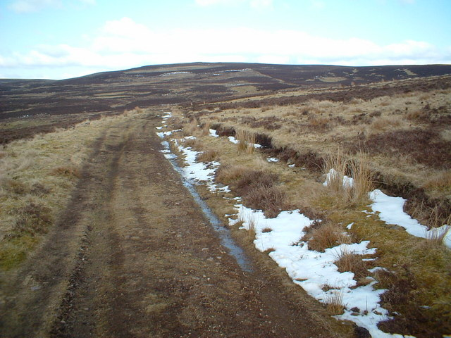 Pillmore Hill track