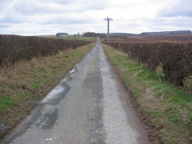 Lane to Octon