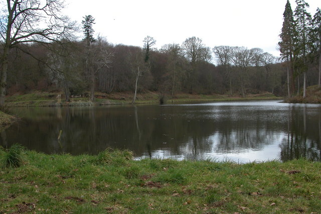 New Pool, Shrawley Wood