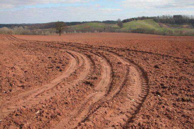 Ploughed field, near Shrawley