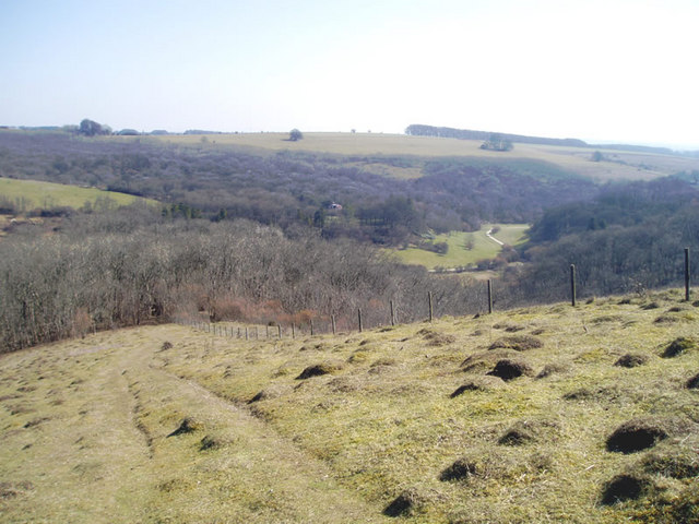 Ashcombe Bottom from Win Green