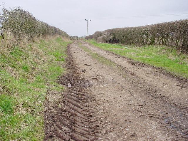 Short Farm Track