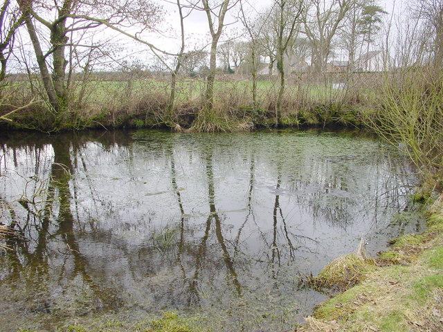 Pond at Kelsick