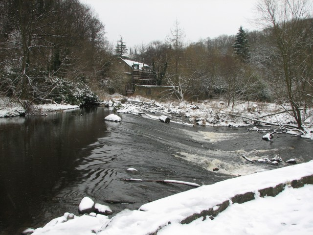 Weir, Roseburn