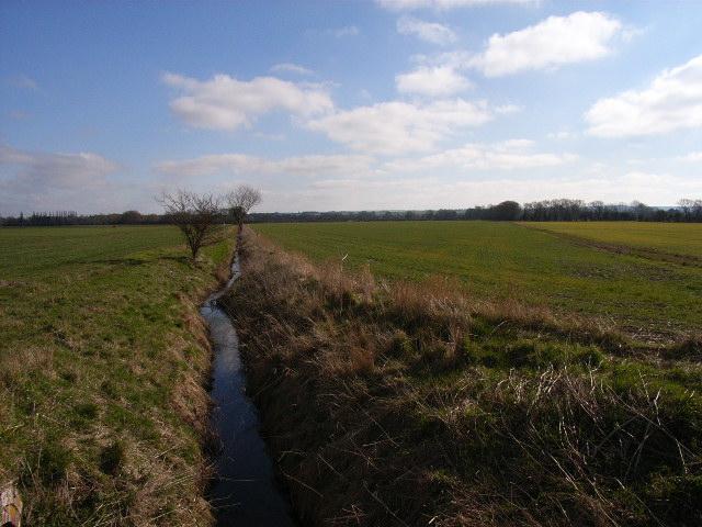 Farmland north of Benson