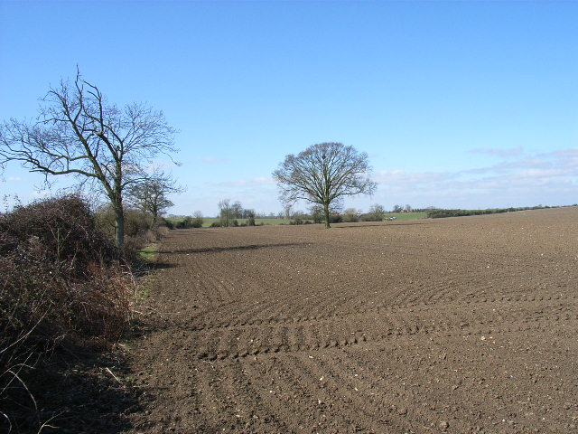 Farmland east of Newington