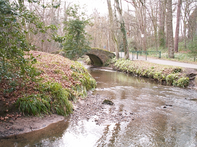 Kinness Burn by Law Mill