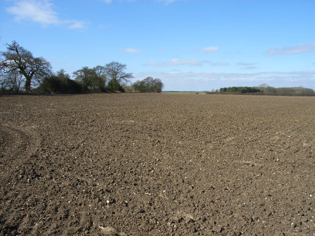 Farmland west of Chalgrove