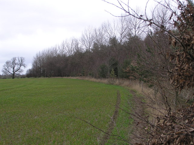 Site of Jolby medieval  village