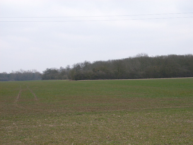 Farmland and woodland south of Chalgrove