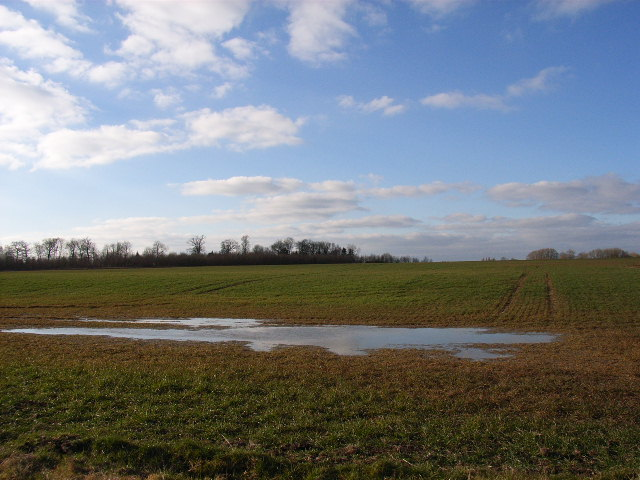 Farmland south of Little Haseley