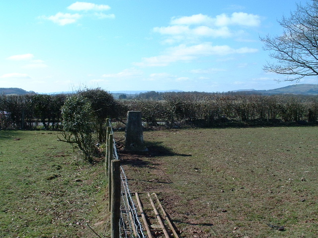 Triangulation pillar near Broad Oak