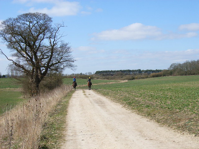 Bridleway near Whitehouse Farm