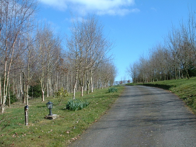Driveway to Scotland Barn