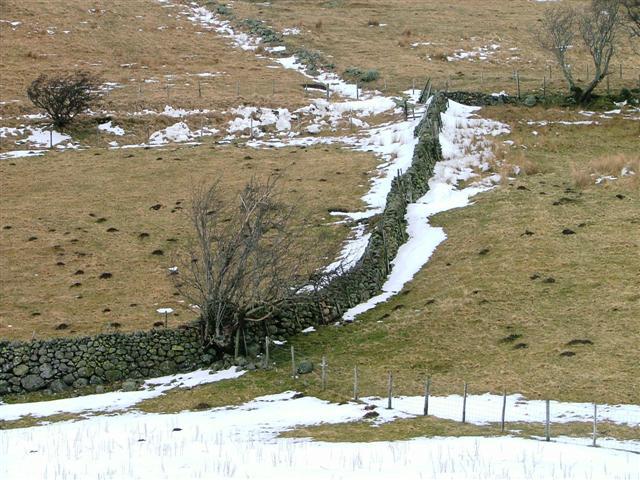Fell Wall Climbing up to the Dowthwaitehead Road