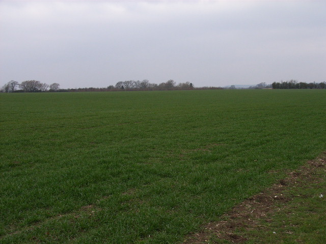 Farmland at Warpsgrove