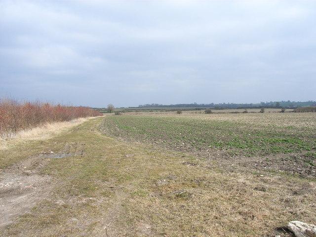 Farmland at Warpsgrove