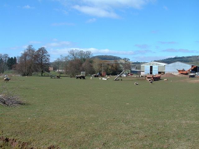 Motte & Bailey behind Green Farm - Orcop