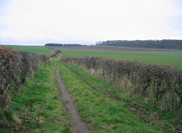 Track, Newmains