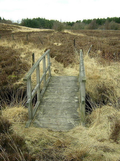 Footbridge in Palacerigg Country Park