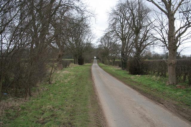 Country lane near Kelby Farm