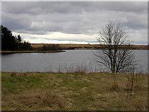 NS7973 : Fannyside Loch by Iain Thompson