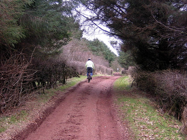 Cycling in Palacerigg Country Park