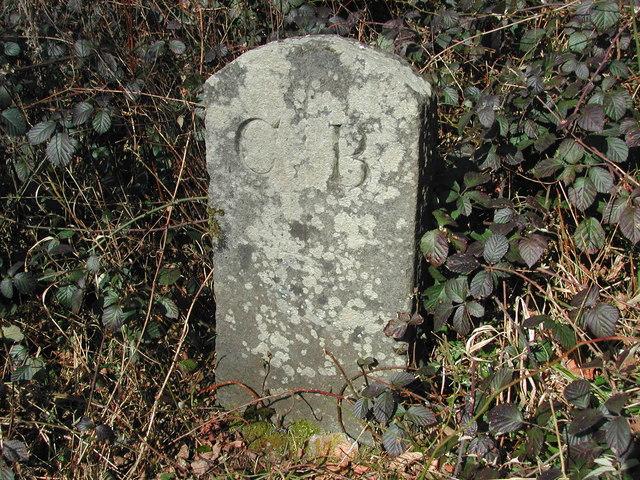 Weston Big Wood - Boundary Stone