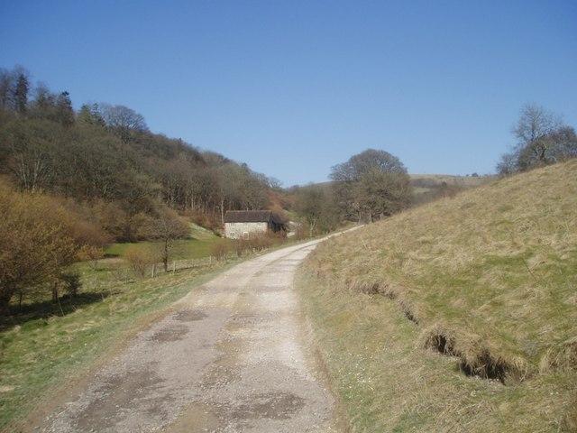 Ashcombe Bottom