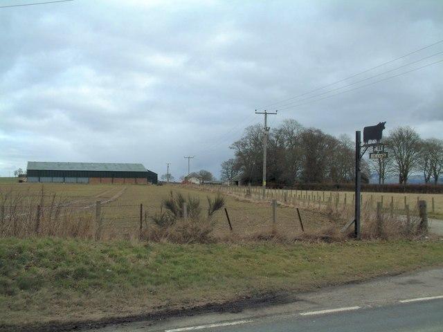 Hills of Bendochy Farm