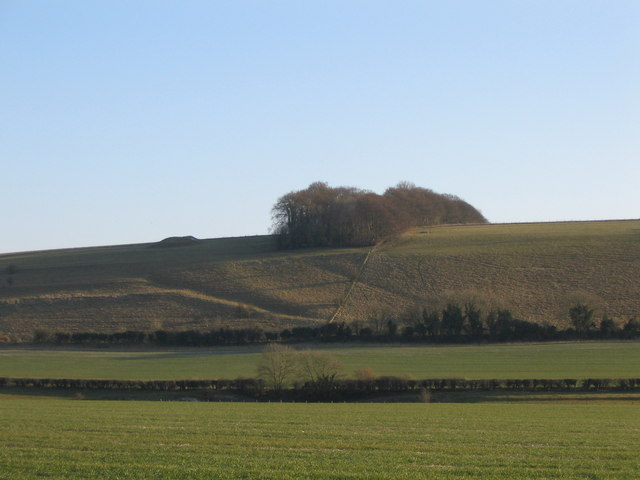 Wylye Valley farmland