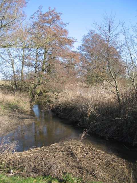 Confluence on the River Stour