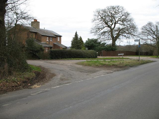 Cucumber Lane