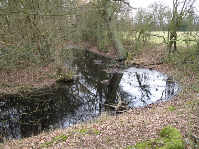 Coldharbour Moat