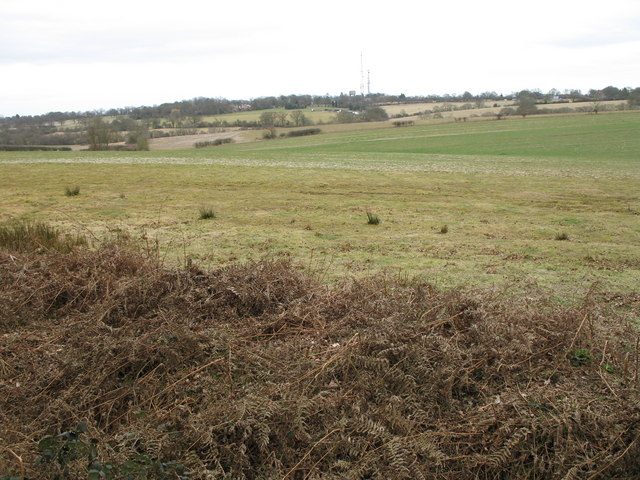 Open Farmland - TL2806