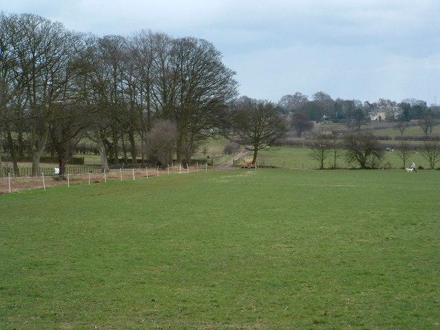 Track towards Wood Farm