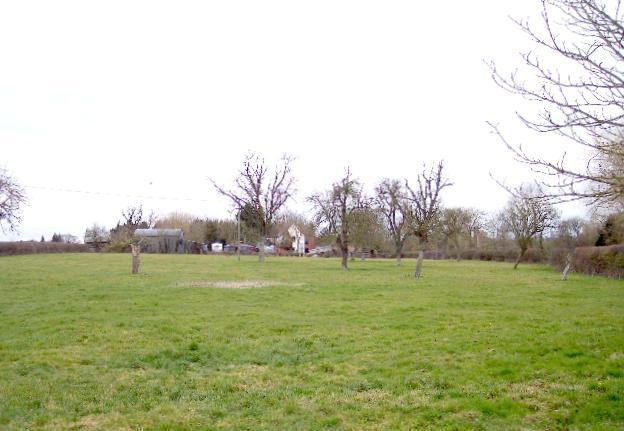 Orchard and Farm near Halfway Bridge