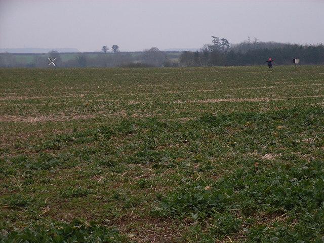 Farmland near Easington