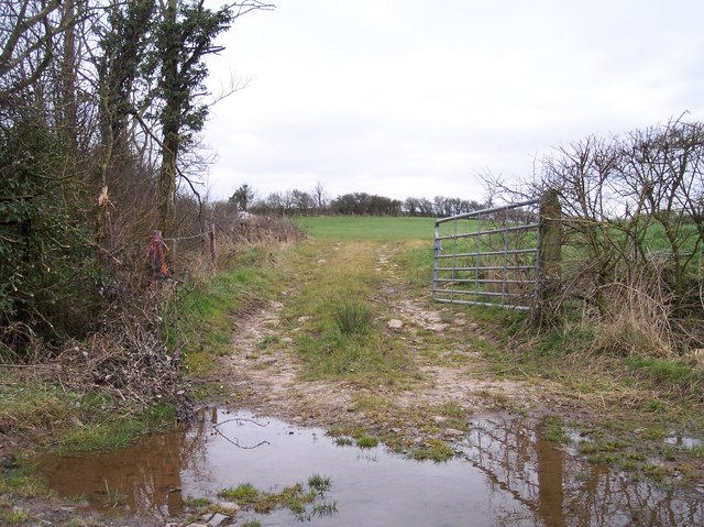 Gateway to Meadow near Gamage Court